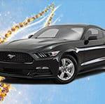 Mustang ve Sportce